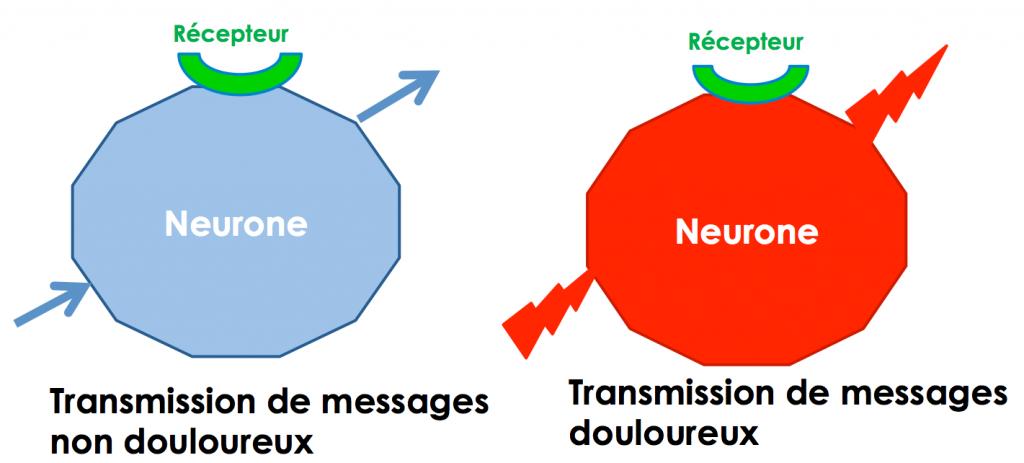 transmission-message